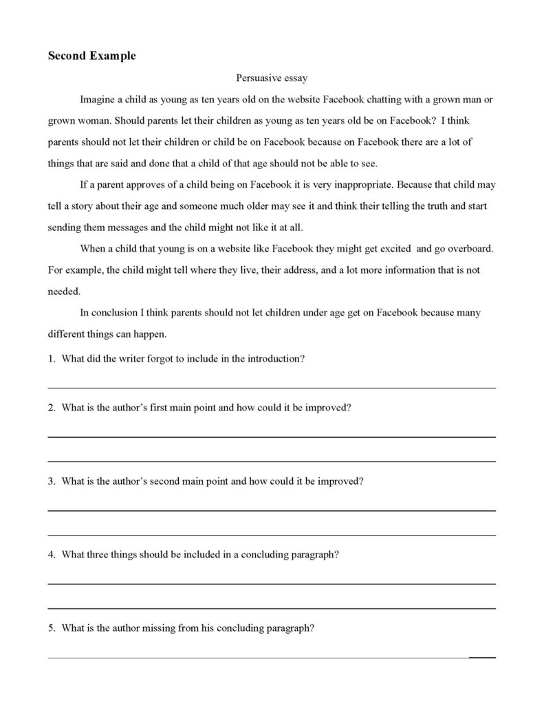 Persuasive Essay Examples | Preview